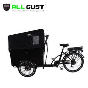 3 Wheel Electric Bicycle Cargo Bike 250W 36V Tricycle With Wooden Case