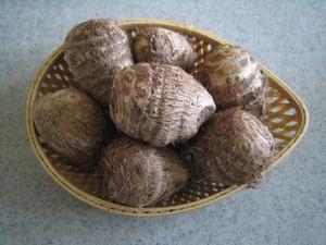Small Taro / Colocasia esculenta Corm
