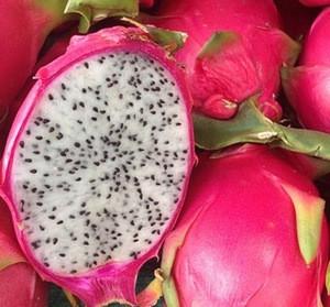 Fresh / Dried / Frozen / Dragon Fruit, Seeds