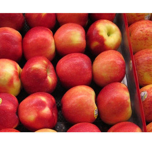 Fresh Fuji Apple Fruit, red Fuji apples, fresh custard apple fruit/delicious apple fruit/mature apples fruit for Sale