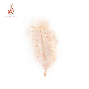 Hot selling dyed 40cm pink ostrich feather for birthday wedding holiday party decoration