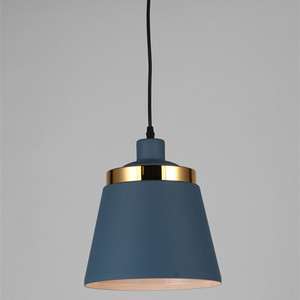 LED Dimmable Color Changing Pendant Lights/ Iron Round LED Pendant Light From China Factory