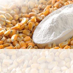 Thickening Food Texture High-grade Medical Grade Maize Corn Starch