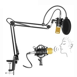 BM 800 Mic with Shock Mount Arm Scissor Stand Filter Studio Condenser Microphone