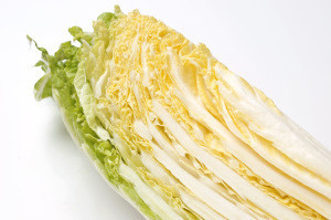 Wholesale Fresh cabbage for making kimchi