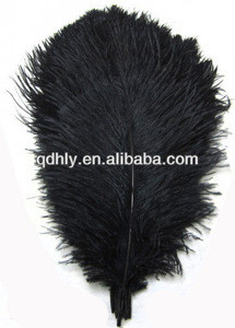 Black large ostrich feather