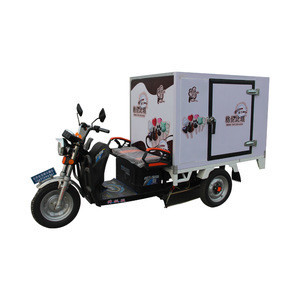 China electric freeze food delivery bike cargo delivery tricycle for sale