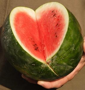 High Quality Fresh Water Melon