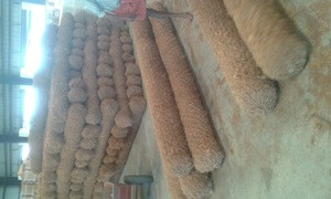 High Quality Long Lasting Erosion Control log Available for Bulk Purchase