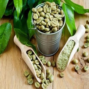 Premium Green Bean Robusta Coffee