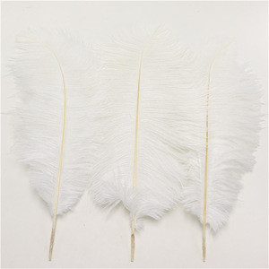 Wholesale Natural party Decorative White Ostrich Feathers For Wedding Centerpieces