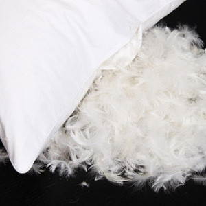 Wholesale white goose feather and down jacket filling duck or goose feather down