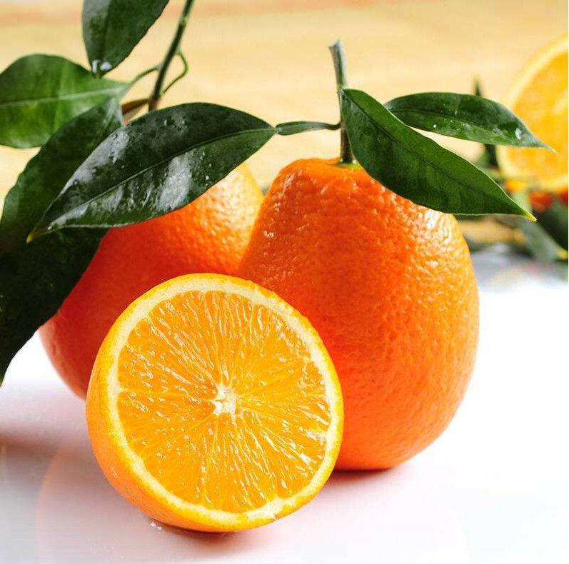 Fresh Orange, Navel orange