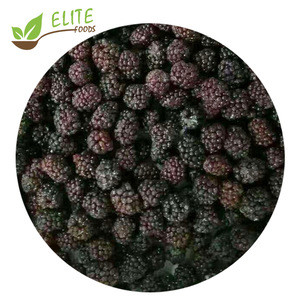 2020 New Crop Frozen Fruits A Grade IQF frozen blackberry Low Price