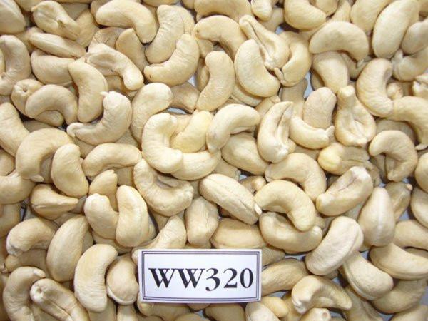 Cashew kernels W320 - 22.68 Kg/vaccum bag/carton, MOQ 1x20FCL
