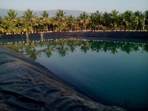 HDPE geomembrane price/malaysia pond liner/hdpe pond liner phillipenes