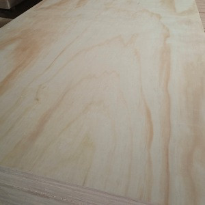 Pine Plywood Board