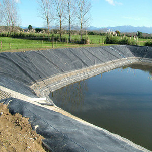 Plastic HDPE Fabric Geomembrane Waterproofing Agriculture Liner for Fish Pond