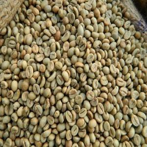 AA grade Wholesaler Dried arabica coffee beans/green coffee