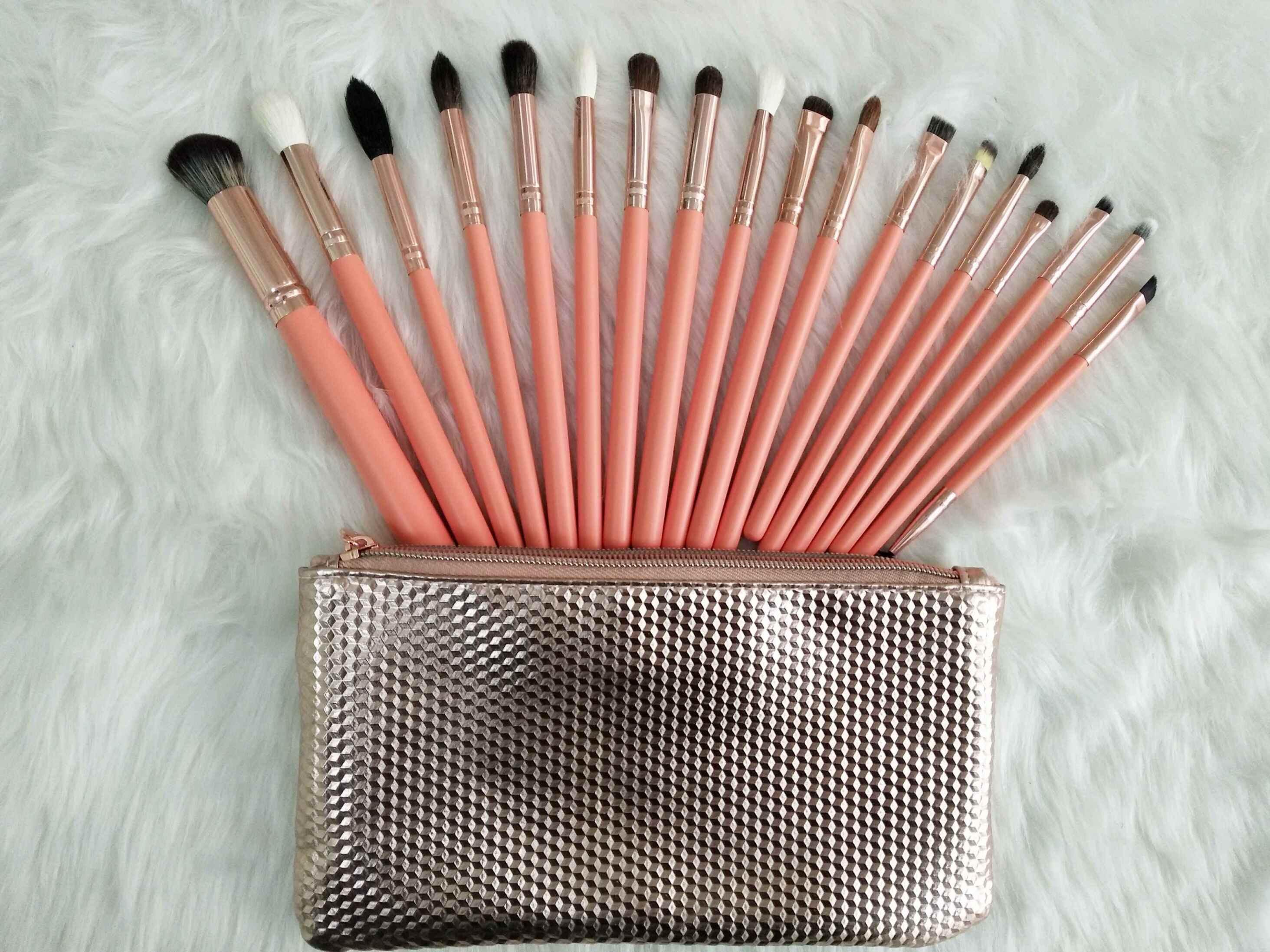 Fashion Daily Using Cosmetic Brush/Makeup Brushes