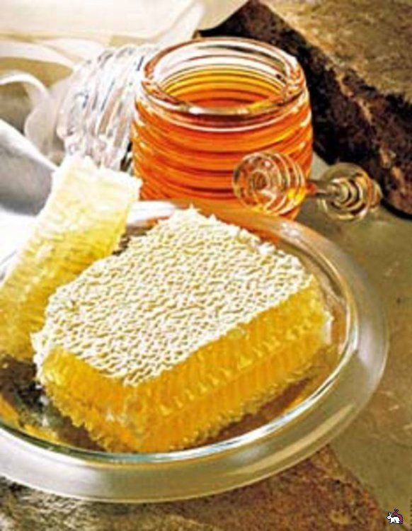 Honey from Bashkiria