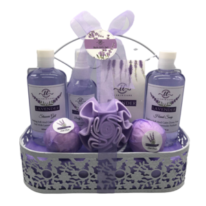 Spa Bath Gift Set for Women Wire Basket Bath and Body Gift Sets