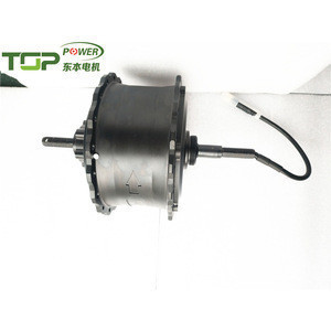Electric bicycle spoke wheel hub motor 24V 36V 48V E-Scooter motor DC brushless motor for Asia market