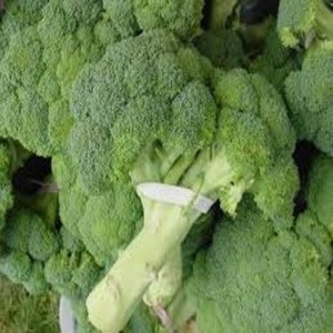 Good Quality Fresh Vegetables Available