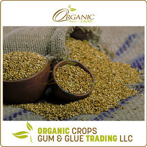 Low Market Price Natural Organic Millet Seed