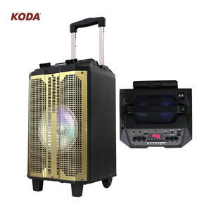 Portable power amplified speaker for music or outdoor party