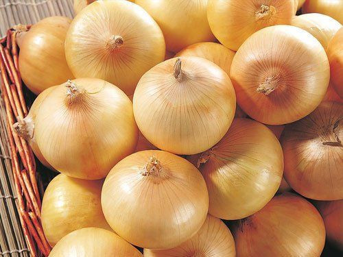 High Premium Sweet Red Natural Fresh Onion For Sale