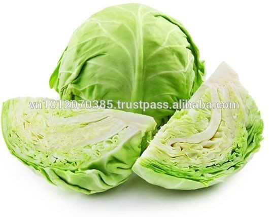 Vietnamese High Quality Wholesale Fresh Cabbage
