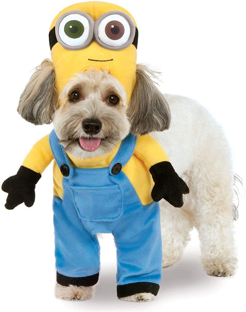 Minions pet transform costume