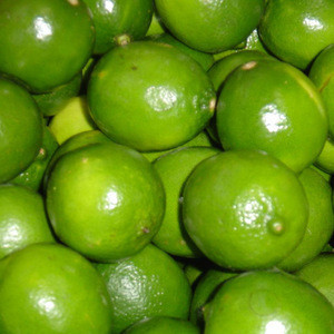 Fresh Green Lime Seedless and SEEDLESS LIME