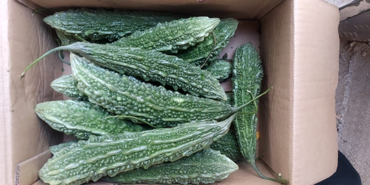 Import Fresh Vegetables from India