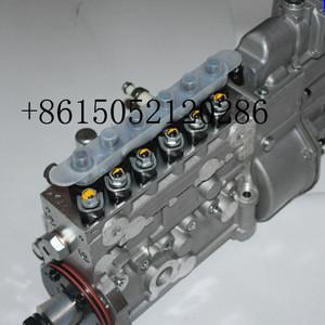 6P1173 Wuxi weifu diesel fuel injection pump  BH6P120015 for Weichai WD615.46 OE 612601080216