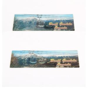 Customized High Quality Rulers 3D lenticular Plastic Ruler