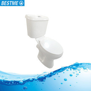 Promotion Foshan washdown sanitary ware one piece toilet
