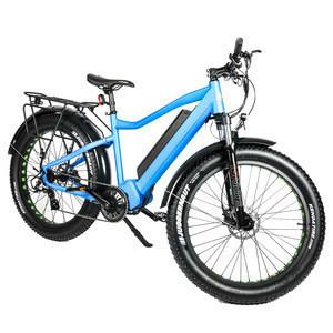 Wholesale BAFANG FAT-HD 48V 1000W Powerful Ebike Electric Bicycle China Company