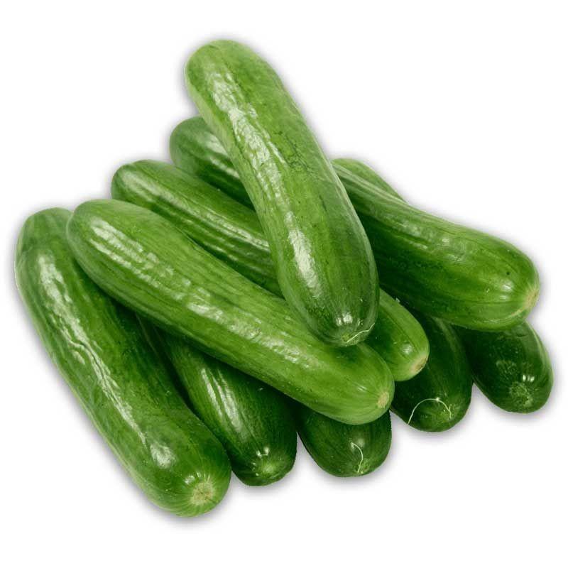 Fresh Green Cucumber For Sale