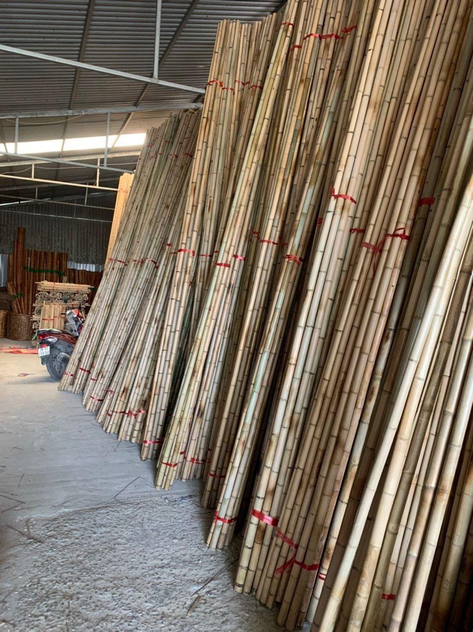 High Quality Bamboo Cane