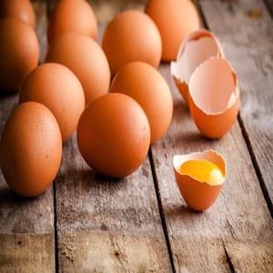 Fresh Farm Chicken Table Eggs/Fresh Chicken Hatching EGGS At Good Prices