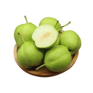 China Wholesale Delicious Fresh Farm Pear