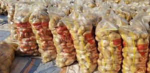 Fresh Egyptian Potato ( Spontta - Kara - Rosetta -Diamante- Nicola ) crops 2018