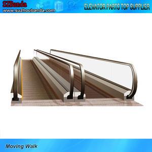 Indoor & Outdoor 11 Degree Passenger Escalator & Moving Walk