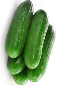 Very High Quality Fresh Cucumber