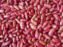 High Quality Specked Kidney Beans With Vitamin B1 And Iron