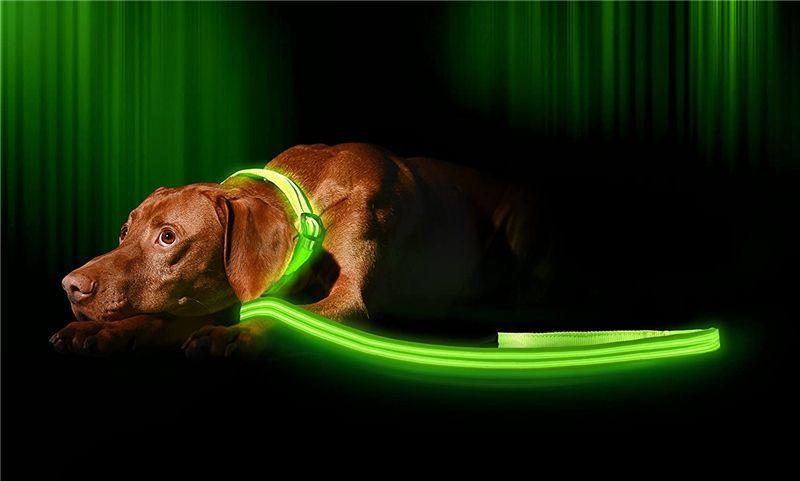 Night Safety Light Up Flashing LED Pet Dog Leash LED dog leash USB charging