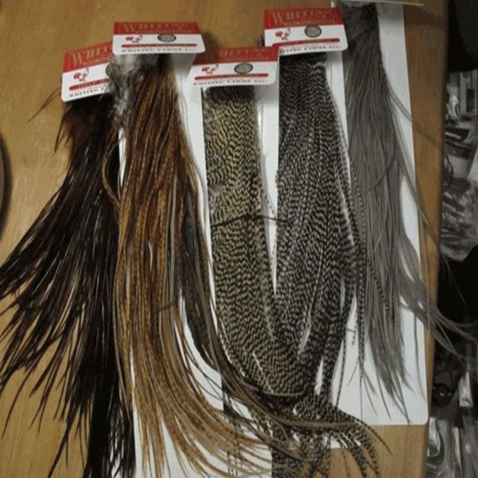Grizzly rooster feather