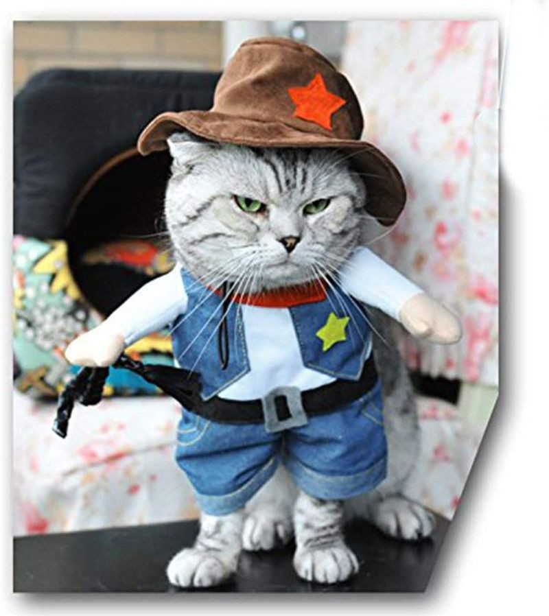 Import Pet dog cat Halloween costume, party cowboy Christmas special event costume from China